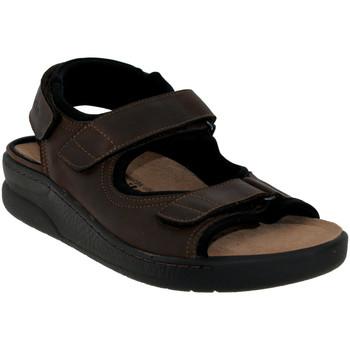 Chaussures Homme Sandales et Nu-pieds Mobils By Mephisto VALDEN Marron cuir