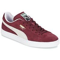 Scarpe Sneakers basse Puma SUEDE CLASSIC Bordeaux