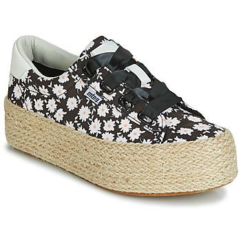 Chaussures Femme Baskets basses MTNG WANDA Blanc / Noir