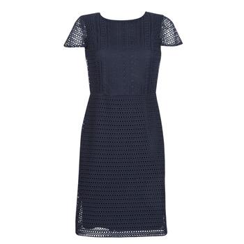 Vêtements Femme Robes courtes Lauren Ralph Lauren NAVY SHORT SLEEVE DAY DRESS Marine