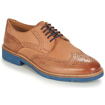Chaussures Homme Derbies André FLOWER Marron / Bleu