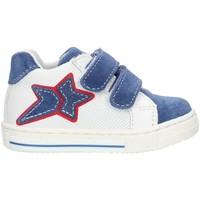 Chaussures Fille Baskets montantes Balocchi 493265 Bleu et blanc