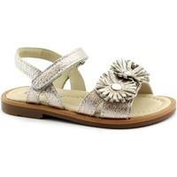 Chaussures Fille Sandales et Nu-pieds Balocchi BAL-E19-496490-CO-b Oro