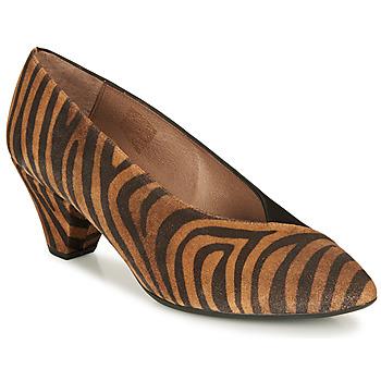 Chaussures Femme Escarpins Wonders I7601-ZEBRATO-CUERO-ANTE-NEGRO Marron