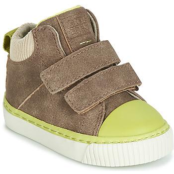 Schuhe Jungen Sneaker High Gioseppo ERDING Maulwurf