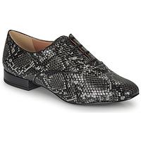 Schuhe Damen Derby-Schuhe André VIOLETTE Grau