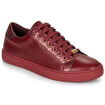 Schuhe Damen Sneaker Low André BERKELEY Bordeaux