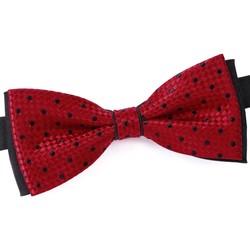 Vêtements Homme Cravates et accessoires Dandytouch Noeud papillon Mazare rouge