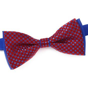 Vêtements Homme Cravates et accessoires Dandytouch Noeud papillon Sacha rouge