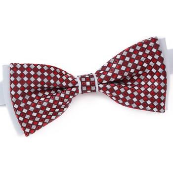 Vêtements Homme Cravates et accessoires Dandytouch Noeud papillon Archy rouge
