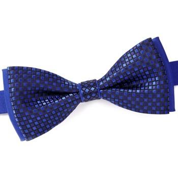 Vêtements Homme Cravates et accessoires Dandytouch Noeud papillon Flint Bleu