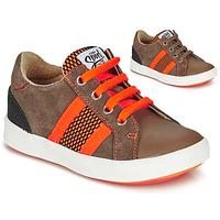 Chaussures Garçon Baskets basses GBB ANTENO CTS MARRON DPF/2706