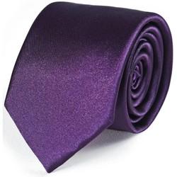 Vêtements Homme Cravates et accessoires Dandytouch Cravate Slim unie Prune