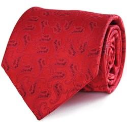 Vêtements Homme Cravates et accessoires Dandytouch Cravate Elo Etui Rouge