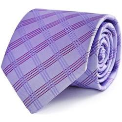 Vêtements Homme Cravates et accessoires Dandytouch Cravate Urano violet