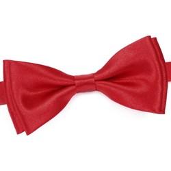 Vêtements Homme Cravates et accessoires Dandytouch Noeud papillon uni Rouge
