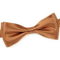 Vêtements Homme Cravates et accessoires Dandytouch Noeud papillon uni Ocre