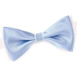 Vêtements Homme Cravates et accessoires Dandytouch Noeud papillon BeCool Neath Ciel
