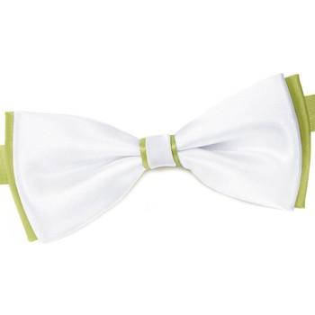 Vêtements Homme Cravates et accessoires Dandytouch Noeud papillon BeCool York Anis