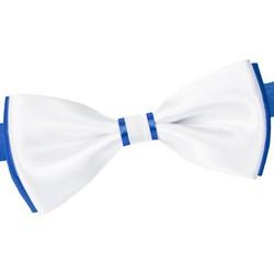 Vêtements Homme Cravates et accessoires Dandytouch Noeud papillon BeCool York Gitane