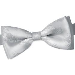 Vêtements Homme Cravates et accessoires Dandytouch Noeud papillon Vito Gris
