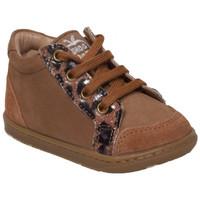 Chaussures Garçon Boots Shoo Pom bouba zip box Marron