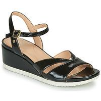 Schuhe Damen Sandalen / Sandaletten Geox D ISCHIA