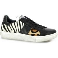Chaussures Femme Baskets basses Reqin's Baskets cuir Noir
