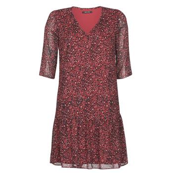 Vêtements Femme Robes courtes One Step RINDA Bordeaux