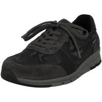 Chaussures Femme Baskets basses Romika Westland 31208 gris