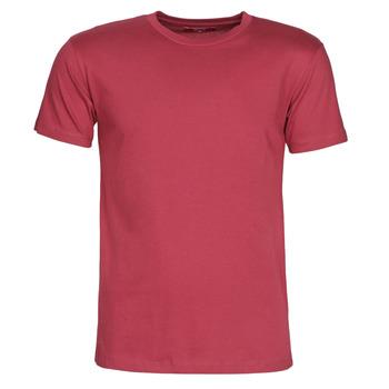 Kleidung Herren T-Shirts BOTD MATILDO