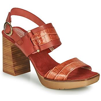 Chaussures Femme Sandales et Nu-pieds Hispanitas PETRA ARCILLA