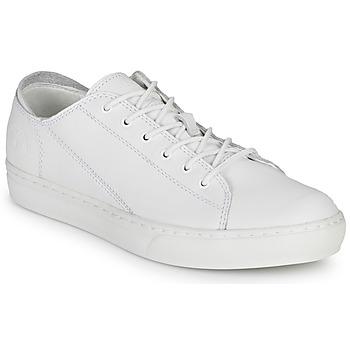Scarpe Uomo Sneakers basse Timberland ADV 2.0 CUPSOLE MODERN OX