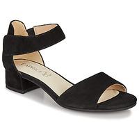 Schuhe Damen Sandalen / Sandaletten Caprice BESSINA