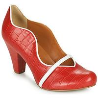 Schuhe Damen Pumps Cristofoli NEFI