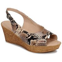Chaussures Femme Sandales et Nu-pieds André DESTINEE Beige