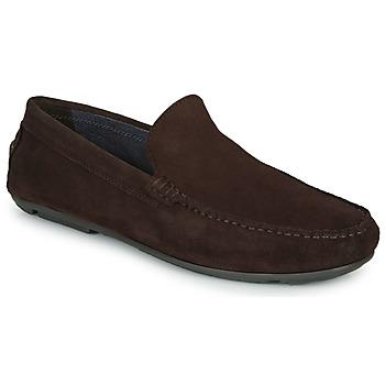 Schuhe Herren Slipper André BIOUTY Braun,