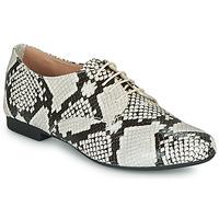 Schuhe Damen Derby-Schuhe André COMPLICITY