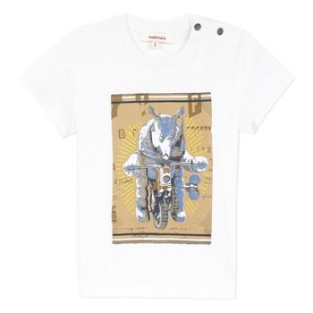 Abbigliamento Bambino T-shirt maniche corte Catimini LARIBI