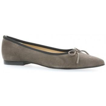 Chaussures Femme Ballerines / babies Brenda Zaro Escarpins cuir velours Gris