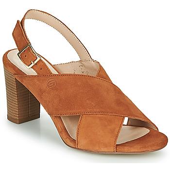 Chaussures Femme Sandales et Nu-pieds Betty London MARIPOL