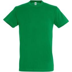 Vêtements Homme T-shirts manches courtes Sols Regent Vert vif