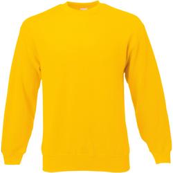 Vêtements Homme Sweats Universal Textiles Jersey Or