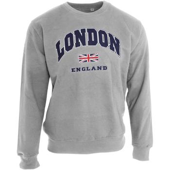 Vêtements Homme Sweats Universal Textiles  Gris sport