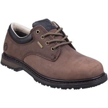 Chaussures Homme Derbies Cotswold Stonesfield Marron