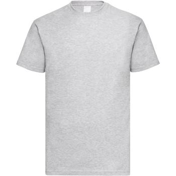Vêtements Homme T-shirts manches courtes Universal Textiles Casual Gris marne