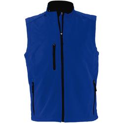 Vêtements Homme Gilets / Cardigans Sols Rallye Bleu roi
