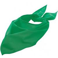 Accessoires textile Echarpes / Etoles / Foulards Sols 01198 Vert tendre