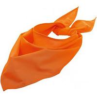 Accessoires textile Echarpes / Etoles / Foulards Sols 01198 Orange