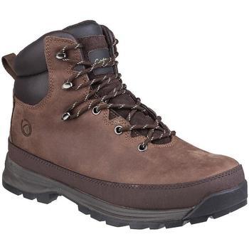 Chaussures Homme Chaussures de sécurité Cotswold  Marron